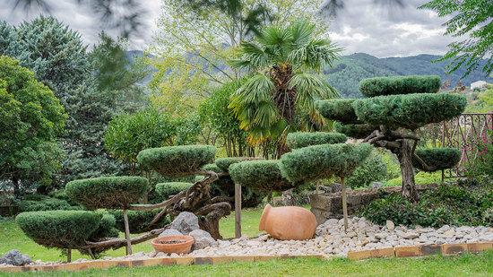 Jardin topiaire