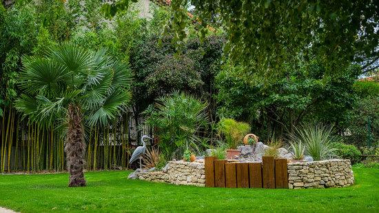 Massif palmier et papyrus