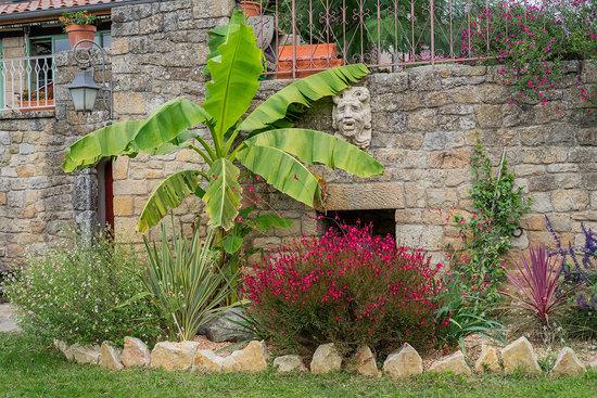 Massif de plantes vivaces à Privas