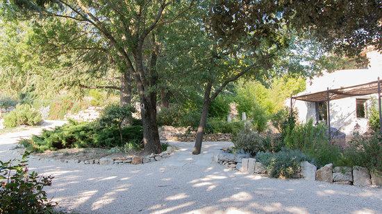 Jardin aromatique à St Montan